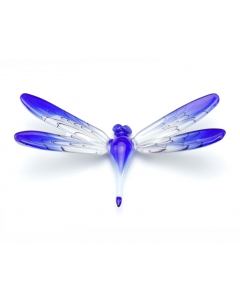 Dragonfly small and big accessoires
