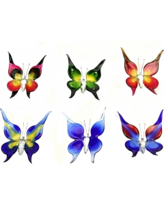Butterfly small & big accessoires